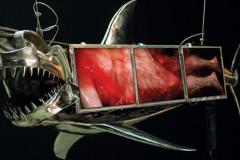 sharkman-2009.