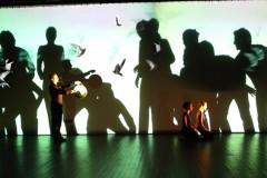 Shadows, 2005